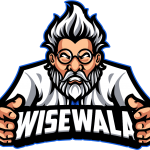 WiseWala Web Design